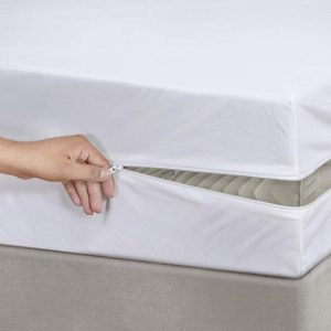 Mattress protector encasement